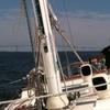 50% Off Sailing