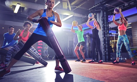 Armageddon Fitness Classes at Alter Ego Fitness (Up to 76% Off). Two Options Available.