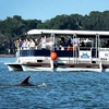 Up to 50% Off Dolphin-Safari Cruises