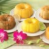 Mini Tropical Bundt Cake Sampler (6-Pack of 4 Oz. Cakes)