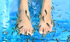 Spa Thétys Détente: Fishpedicure de 30 minutes pour 1 ou 2 personnes dès 14,90 € au Spa Thétys Détente