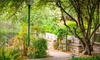 Tucson Botanical Gardens –Up to 56% Off Visit