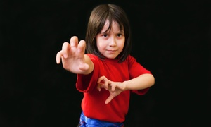 Tiger's Kung Fu Academy: Four or Eight Classes for Kids Aged 3–5, 6–8, or 9 and Up at Tiger's Kung Fu Academy (Up to 61% Off)