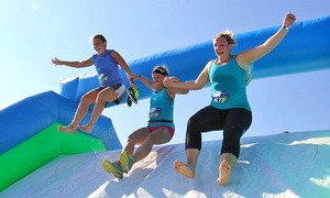 Insane Inflatable 5k: One Registration to Insane Inflatable 5K on Saturday on April 9