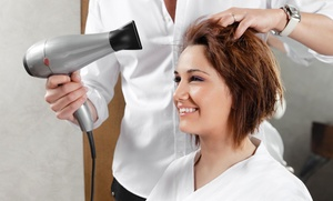 Bbk Salon: Color and Blow-Dry from Bbk Salon (55% Off)