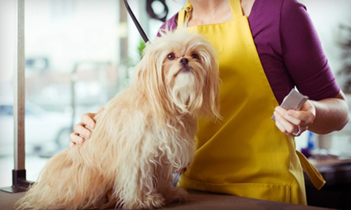 The Dog Wash - Silverado Ranch: Full Dog-Grooming Package at The Dog Wash (Up to 51% Off). Four Options Available.