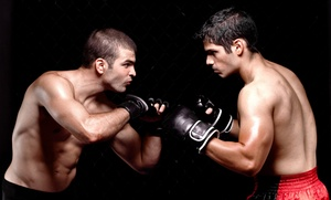 Fusion Fight Co.: 10 or 20 Adult Kickboxing Classes or One-Month Kickboxing Membership at Fusion Fight Co. (Up to 86% Off)
