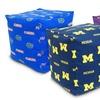NCAA Cube Cushions