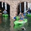 56% Off Wildlife Kayak Tour in Oxnard