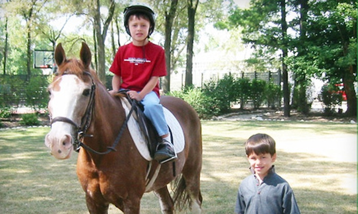 Galway Farm Ltd. - Long Grove: $45 for Two Half-Hour Horse-Riding Lessons at Galway Farm Ltd. in Long Grove ($100 Value)