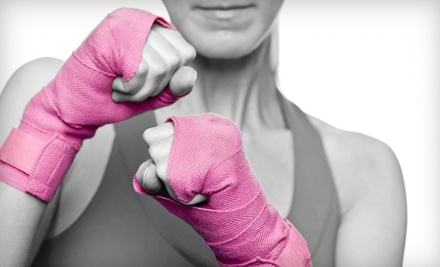 Peak Body Transformation: 10-Week Kickboxing Fitness Boot Camp Starting 5/23/11 - Peak Body Transformation in Lewisville