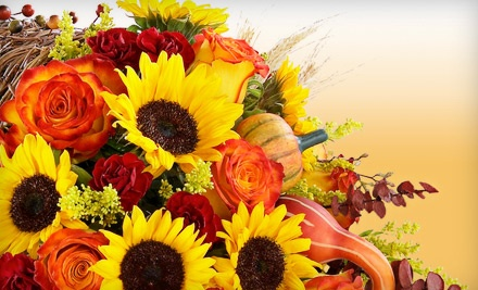 $50 Groupon to Wilhides Unique Flowers & Gifts - Wilhides Unique Flowers & Gifts in Ellicott City