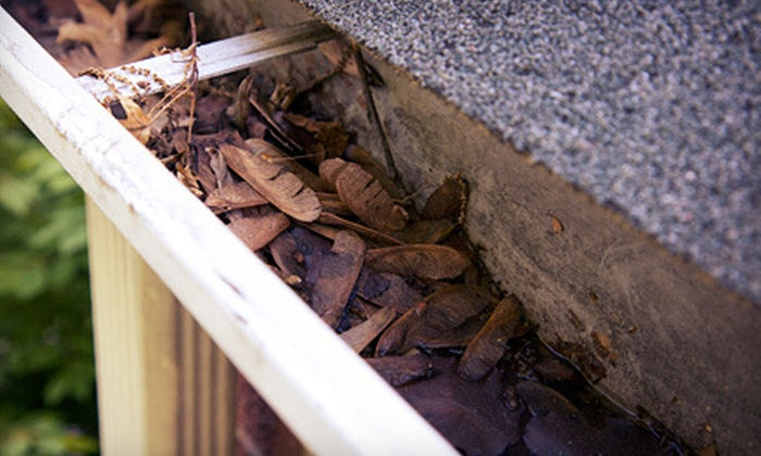 Gutterman Services - Washington DC: 200 or 100 Linear Feet of Gutter Cleaning with Option for Roof Inspection from Gutterman Services (Up to 67% Off)