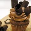 Half Off Cupcakes at Vanilla Bean Gourmet