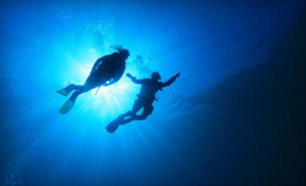 Two Open-Water Scuba Dives (a $165 value) - Brampton Scuba in Brampton