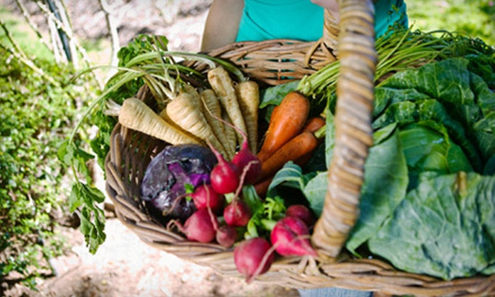 The Root - Houston: $40 for Two Weeks of Local-Produce Delivery from The Root ($80 Value)