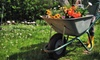 DesignScape Creations: Three Basic Lawn Treatments or One Basic Treatment with Aeration and Seeding from DesignScape Creations (Up to 51% Off)