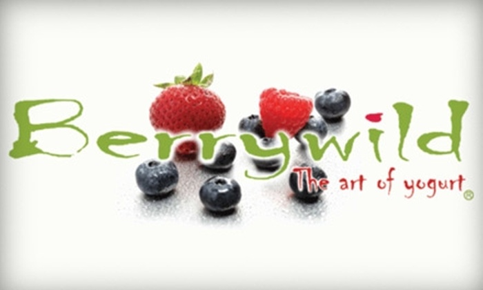 Berrywild Yogurt - Multiple Locations: $6 for $12 Worth of Frozen Snacks at Berrywild