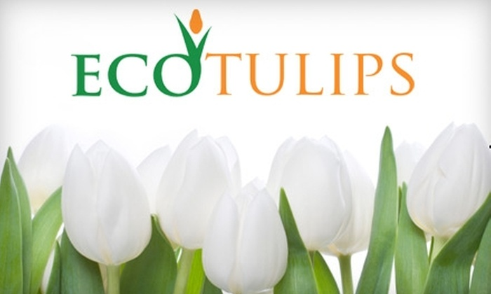 EcoTulips - Washington DC: $5 for One Dozen Pick-Your-Own Tulips at EcoTulips