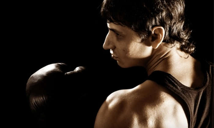 North Texas Mixed Martial Arts - Dallas: $39 for One Month of Unlimited Classes at North Texas Mixed Martial Arts in Flower Mound ($149 Value)