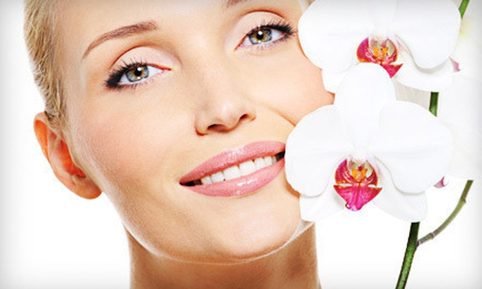 DaVinci Skin Care - King of Prussia: One, Three, or Five Facial Treatments at DaVinci Skin Care in King of Prussia (Up to 64% Off)
