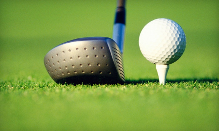 King Par Superstore - Flushing: Adult or Junior One-Hour Golf Lesson at Boyne Golf Academy in Flushing
