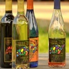 55% Off Wine Class and More at Turtle Run Winery