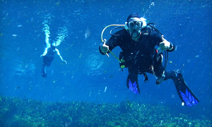 Sunsation Dive Charters - Altamonte Springs: Scuba Refresher Course or Open-Water Certification Course from Sunsation Dive Charters (Up to 58% Off)