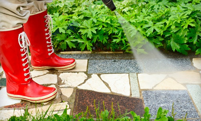 Clean Choice - South Natomas: Pressure Wash for a Front Walkway or Driveway, or a Walkway, Driveway, and Back Patio from Clean Choice (Up to 54% Off)