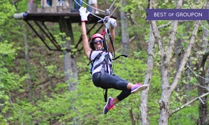 Virginia Canopy Tours: $49 for a Three-Hour Canopy Zip Line Tour for One at Virginia Canopy Tours ($89 Value)