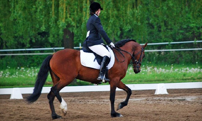 Grand Review Farm - Berlin: Two or Four Private Horseback-Riding Lessons at Grand Review Farm in Allenton (Up to 65% Off)