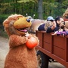 Half Off Outing to Pumpkin Festival in Candia
