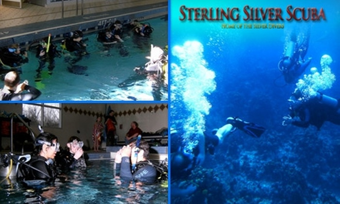 Sterling Silver Scuba - Potomac: $20 for a Discover Scuba Diving Class from Sterling Silver Scuba
