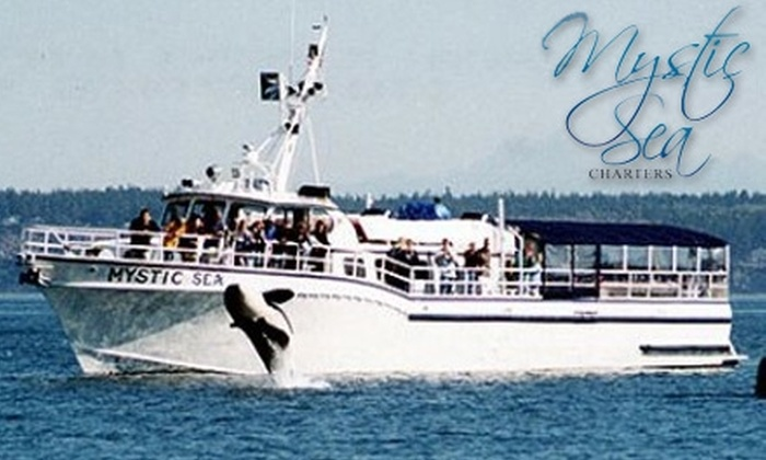 Mystic Sea Charters - Anacortes: $55 for a Five- to Six-Hour Orca Whale-Watching Tour from Mystic Sea Charters ($99 Value)