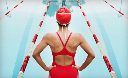 $40 Groupon to Lane Four Swim Shop - Lane Four Swim Shop in Sugar Land