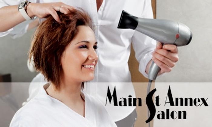 Main St. Annex Salon  - Los Gatos: $49 for a Shampoo, Haircut, Express Kérastase Treatment, and Blowout with Natasha at Main St. Annex Salon