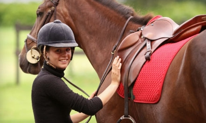 Equestrian's First Place - Royal Palm Beach-West Jupiter: $25 for a One-Hour Private Horseback-Riding Lesson at Equestrian's First Place ($50 Value)