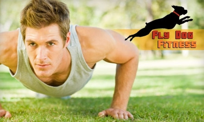 Fly Dog Fitness - North Charleston: $39 for Four Weeks of Unlimited Boot-Camp Sessions at Fly Dog Fitness ($120 Value)