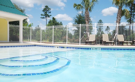 One Month of Pool Cleaning With or Without Vacuuming from Pool City (51% Off)