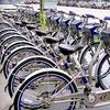 71% Off Bike-Sharing Membership in Miami Beach