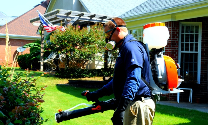 Inspect-All Services: $49 for $159 Worth of Mosquito Control Treatment at Inspect-All Services