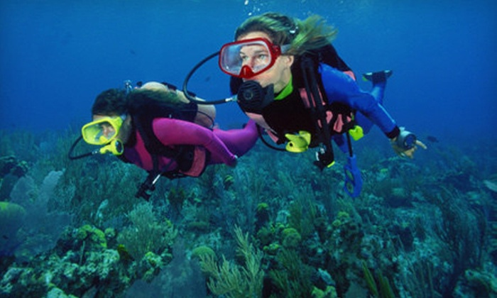 Adventure Diving - Crystal River: $169 for Scuba Certification Package from Adventure Diving in Crystal River (Up to a $399 Value)