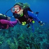 Up to 58% Off Scuba Certification in Crystal River