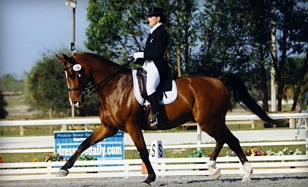 Annwyn Equestrian Center - Annwyn Equestrian Center in Seffner
