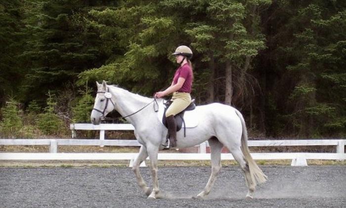 Rockin' B Riding Club - Rabbit Creek: $20 for a 2-Hour Afterschool Horse-Riding Camp at Rockin' B Riding Club ($40 Value)