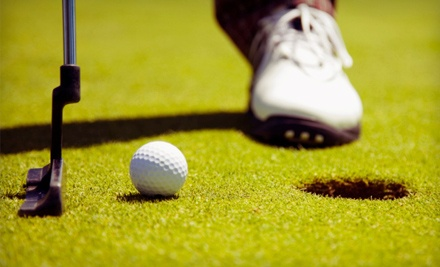 Brooklyn Golf Center: Round of Mini Golf for 2  - Brooklyn Golf Center in Brooklyn