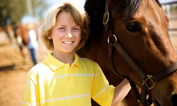 Harmony Stables - Concord: One or Two 60-minute Horseback-Riding Lessons at Harmony Stables (Up to 51% Off)
