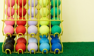 The Putting Place: Two Rounds of Mini Golf for Two or Four or Two-Hour Mini-Golf Party at The Putting Place (Up to 53% Off)