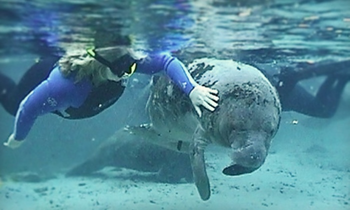 Manatee Tour and Dive - Crystal River: Manatee Tour and Snorkel-Equipment Rental for a Child or Adult at Manatee Tour and Dive