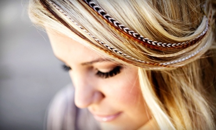Tease Salon - Costa Mesa: $12 for Three Piece Feather Extension ($35 Value) or $75 for Partial Highlights, a Cut, and Style ($150 Value) at Tease Salon in Costa Mesa